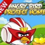 Angry bird protect home