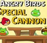 Angry bird special cannon