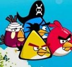 Angry birds counter attack