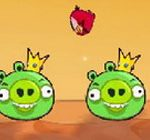Angrybirds vs pig